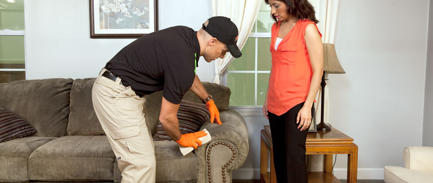 Cove Point, MD carpet upholstery cleaning
